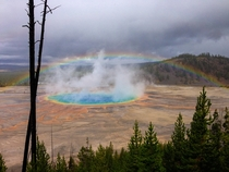 Nature said Grand Prismatic Spring wasnt colorful enough so it added a rainbow OC