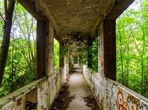 Nature takes back its rights in a decayed Sanatorium
