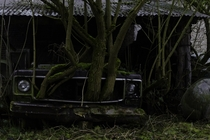 Nature waits for no one abandoned car Chevy Corvair in Belgium