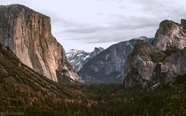 Natures Cathedral - Yosemite Valley CA
