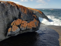 Natures Graffiti Bay of Fires Tasmania OC  x