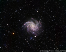 NCG  AKA the Fireworks Galaxy as seen by the Subaru Telescope Hawaii HI