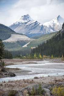 Near the Icefield Parkway Alberta Canada