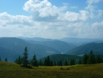 near the top of the feldberg Black Forest Germany