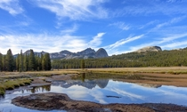 Near Tuolomne Meadows Yosemite OC