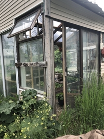 Neglected partially abandoned greenhouse on my property BC Canada