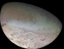 Neptunes colorful moon Triton - A possible captured Kuiper Belt dwarf planet