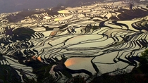 New on UNESCOs World Heritage List the rice terraces in Yunnan China produce a visually striking agricultural landscape built by the Hani people for over  years