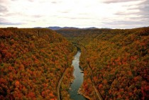 New River Gorge West Virginia Fall Foliage
