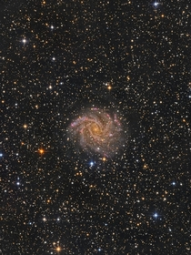 NGC  also known as the The Fireworks Galaxy Image credit Oleg Bryzgalov
