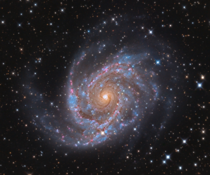NGC  an intermediate barred spiral galaxy located about  million light-years away from earth in the constellation of Leo Minor The black hole at its center is thought to be less than a million times the mass of the sun which is really really small image c