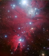 NGC  and the Christmas Tree cluster