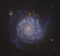 NGC  Spiral Galaxy and Friends -- after you get over this beautiful galaxys grand design check out the array of more distant background galaxies