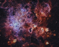 NGC  - The Tarantula Nebula