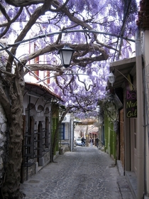 Nice little flower street in Molyvos Lesvos Greece