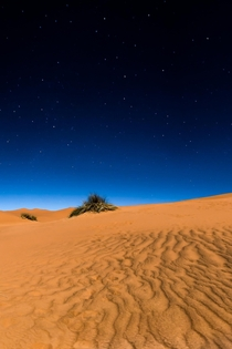 Night in the Sahara Desert Morocco  IGzachgibbonsphotography