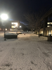 Night shift on a college campus in New Hampshire has its perks