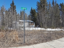 Nightmare on Elm abandoned house in Whitehorse Yukon  x