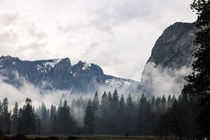 No fancy story about how I got this picture but I still love it Yosemite CA
