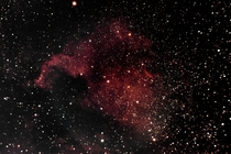 North American nebula from my backyard Bortle