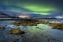 Northern Lights at Lyngen Norway  by Ferran Vega