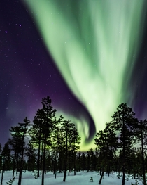 Northern Lights seen from Jukkasjrvi Sweden