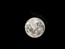 Not as spectacular as the pictures here but captured the moon from my backyard last month I love the level of detail