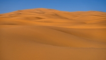 Not that exciting I guess but this is the Sahara Desert from the back of a camel