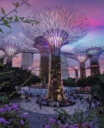 Nothing describes Singapore better than this park