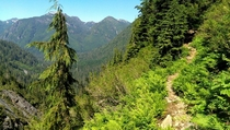 Now that is a trail Mountain Loop Highway Washington State
