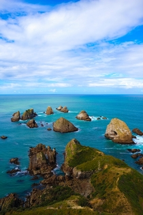 Nugget Point Otago New Zealand