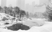 NYCs most recent blizzard hitting Central Park New York NY