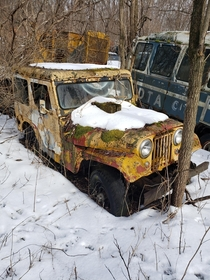NYS DPW Jeep I saw hunting with the dog this morning