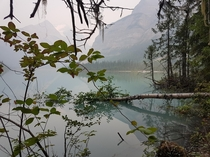 OC - pure tranquility I took this on my first trip to Kinney lake between Jasper Alberta and BC Canada Thought it was a good very first post on my reddit Journey Resolution X