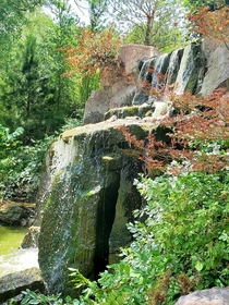 OC Waterfall at the Japanese Garden in ABQ Botanical Gardens x
