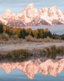 OC- Who else is dreaming of summer in Grand Teton Wyoming