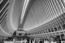 Oculus World Trade Centre NYC Santiago Calatrava
