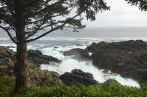 Off the coast of Ucluelet Vancouver Island