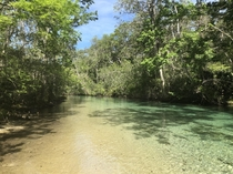 Oh theres a river that winds on forever- Weeki Wachee FL USA