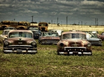OId and abandoned American automobiles and old yellow school buses sit in quiet rows at a site in Texas USA