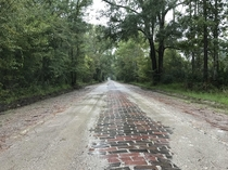 Old Brick Road Dixie Highway Espanola FL