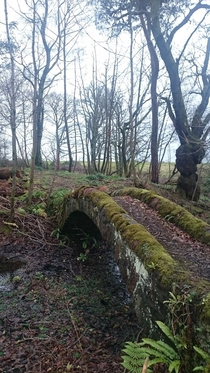 Old Bridge at Kilmahew castle in Cardross Scotland