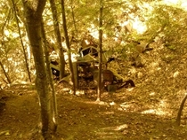 Old cars in the woods Munising MI