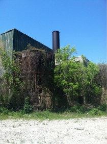 Old factory in New Orleans overtaken by nature