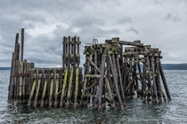 Old Ferry Dock Port Townsend WA