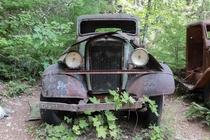 Old flatbed rusting away in the forests of Oregon