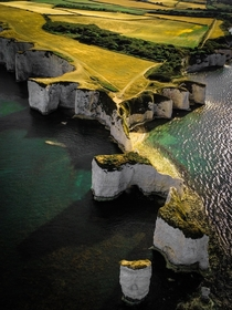 Old Harry Rocks Dorset UK