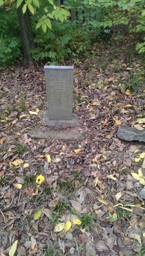 Old headstones in the woods
