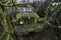 Old mossy truck