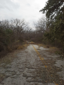 Old road south of San Antonio TX